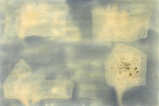 Antón Lamazares, DOMUS OMNIA MAGNA, mixed media on cardboard, 78x118cm, 2007/08