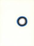 ohne Titel (Fokus) Gouache, Bleistift und Ölstift auf Papier 36x28cm, 2010