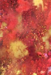 Kolorit / Red ultrachrome print 173x120cm /68x47 in edition 5 + 2 a.p., 2012