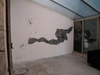 """Exhibition View: """"Parasites et carnivores"""". Librairie Histoire de l'oeil, Marseille. 2006"""