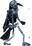 Crow skeleton 60x40cm 2010