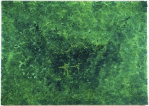 Bosco Sodi Organic Green, 200x280cm, mixed media on canvas, pinta art fair 2009, New York