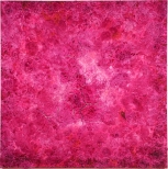 Bosco Sodi Organic Pink, 186x186cm, mixed media on canvas, pinta art fair 2009, New York