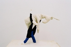 TRAVELLING DONKEY, Wood, Fabric, Cloth, Glue, 55x80x55 cm, 2007