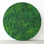 Bosco Sodi Green Circle, mixed media, diameter 250 cm, 2010
